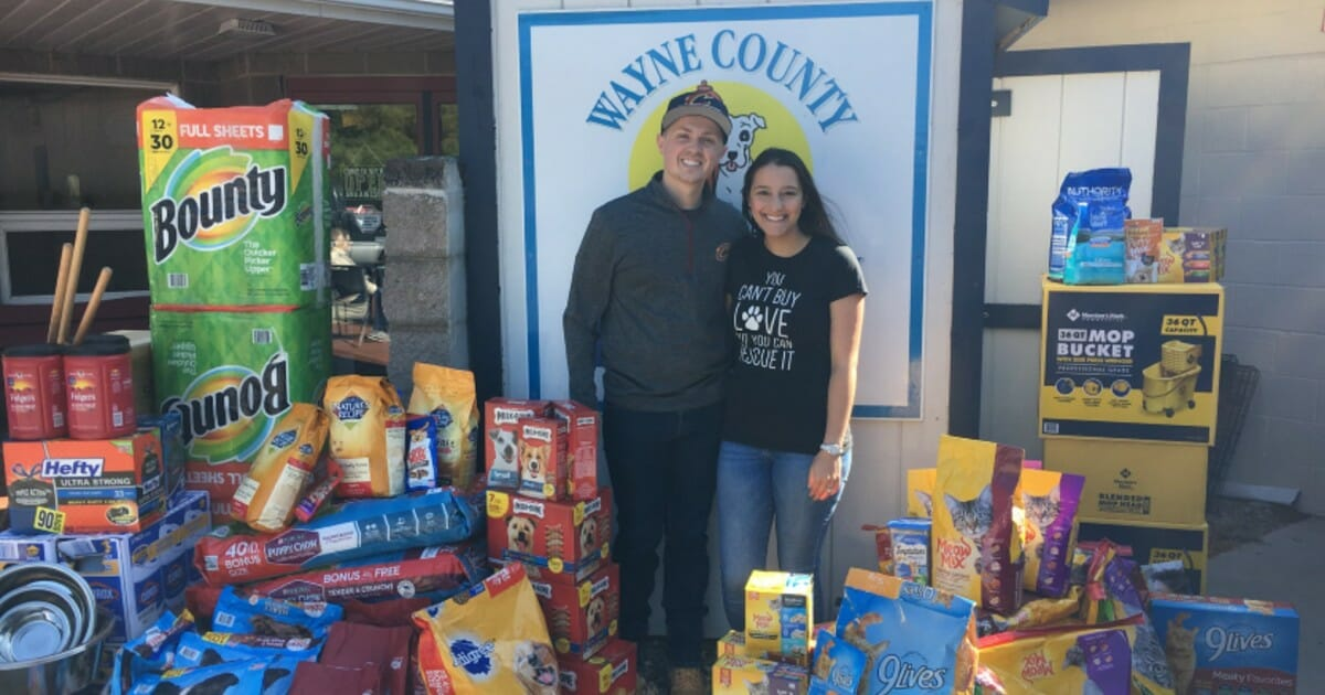 Newlyweds ask wedding guests for donations to animal shelter instead of gifts