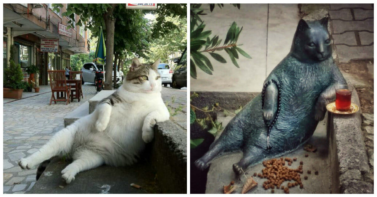When a beloved street cat died, locals memorialized her by putting a statue of her in her favorite spot
