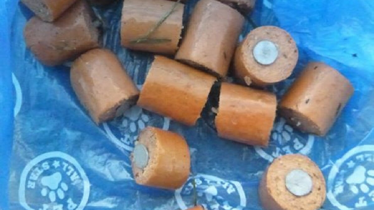 Man finds hot dog pieces with nails inside left to trap dogs — police are investigating
