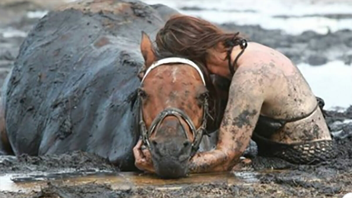 Woman clings to her horse for three hours after 900 lb animal gets stuck in  the mud