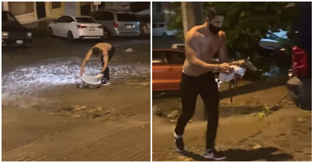 Man gives the shirt off his back to save possum from rain storm