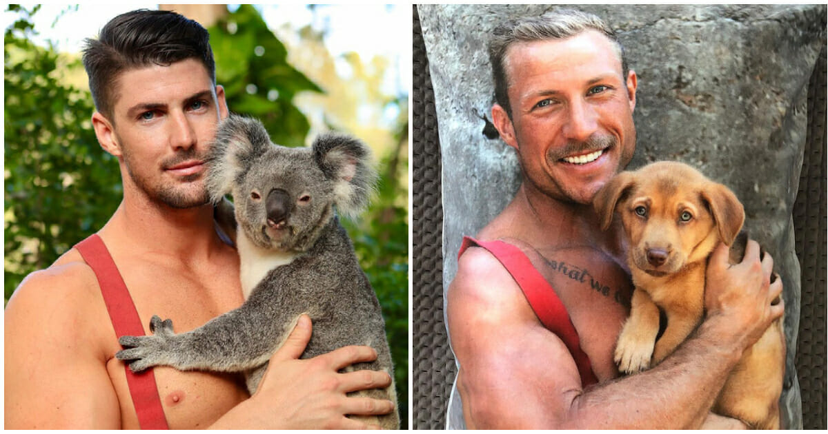 Australian firefighters pose for calendar with rescue animals, raise money  for wildlife after bushfires